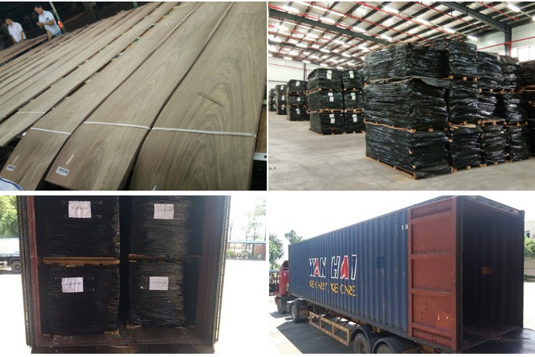 Low price wood face veneer for plywood sheets natural european birch wood veneer