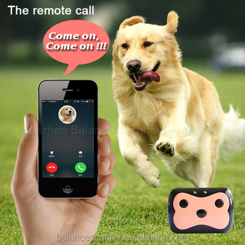 Page 11 in addition  besides S Cat Logistics Services moreover Gpspetcollar furthermore Any Cell Phone Tracker Free. on gps tracking app for dogs