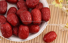 best quality, chinese dried date/ dried red date with best quality