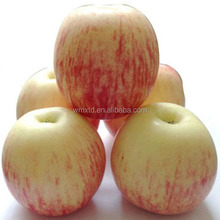 Best Price Fresh Apple Fruits China shandong yantai Fuji Apple Supplier 80# AAA