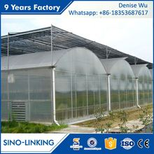SINOLINKING Galvanized aluminum green house Agricultural Production