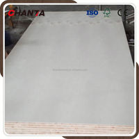 CE first-class poplar plywood from linyi