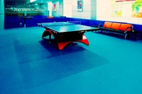 Sports Vinyl / Plastic Floor Surface for Table Tennis Court