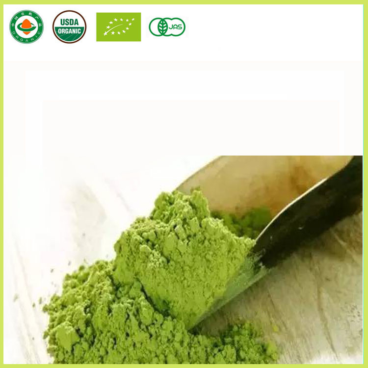 Rich Flavor Premium Matcha Green Tea Powder