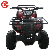 GuoTe Hot Selling New Design 250cc Quad Wheeler ATV For Adults