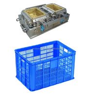 Professional design and manufacturer perforated crate mould special for india market