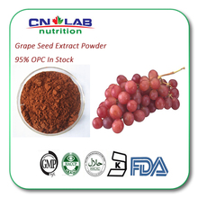 Natural Grape Seed Extract Powder OPC With Free Sample 10-20g
