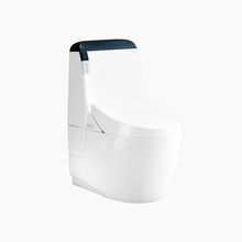Handicapped Convenient Toilet Automatic Smart Toilet