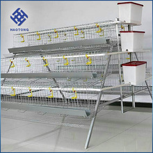 Chicken farm poultry poultry farm automatic chicken layer cage price