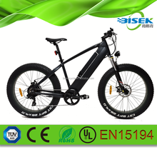 26inch Apollo mtb bike 750w powerful mountain electric bicycle
