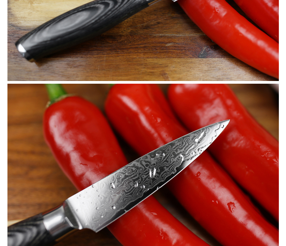 "HTB1h1l3gZbI8KJjy1zdq6ze1VXaP - XINZUO 3.5"" inch Paring Knife 67 layers Japan Damascus Steel Peeling Fruit Knife"