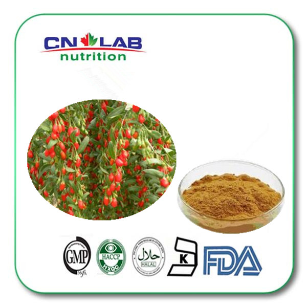 50% polysaccharide WolfBerry Extract Fructose Lycium Barbarum powder