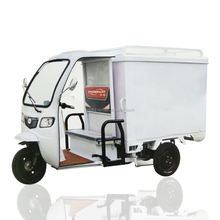 China Supplier Alibaba Closed Electric Cargo Tricycle Three Wheel Motor Vehicle For Express Delivery