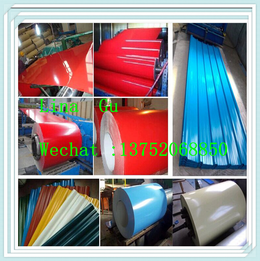 Best price of 103 galvanized steel coil buyer 113 0 21 60-31-8-34-29-27-60-46-100-28-40-21 steel coil with CE certificate