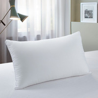 Wholesale Cheap Feather Down Pillow Inserts