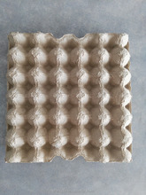 Biodegradable Paper Pulp egg tray price