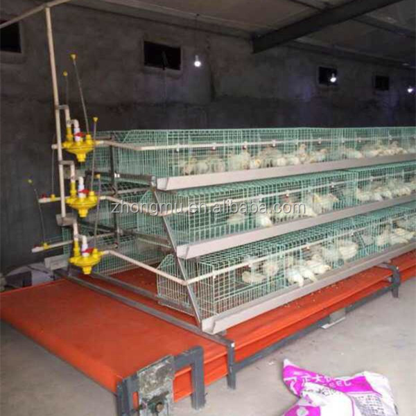 chicken layers farming/egg laying cages for sale/enriched chicken cages