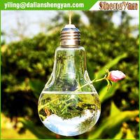 Small Hanging Clear Glass Teardrop Vase Irregular Terrarium