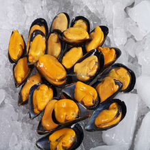 Frozen cooked mussel meat with half shell