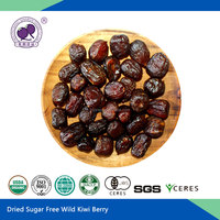 Dried Sugar Free Wild Kiwi Berry