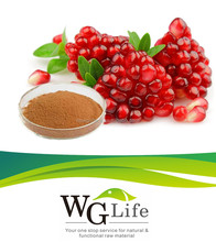 Top Quality Pomegranate Seeds Extract / Pomegranate Peel Extract with Polyphenol 40% UV