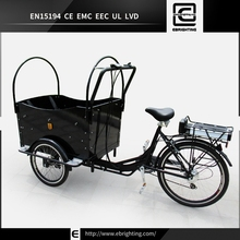 adult pedal cargo bike tricycles BRI-C01 racing motorcycle 600cc