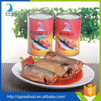 best brand canned mackerel from fish manufacturer
