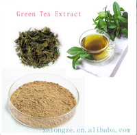 Plant Extract 100% Natural Good-quality Green Tea extract Tea Polyphenols 40%-98%