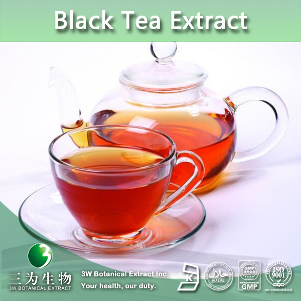 100% Nutural Black Tea P.E.,Instant Black Powder,Black Tea Powder Extract Polyphenols 20% 40%