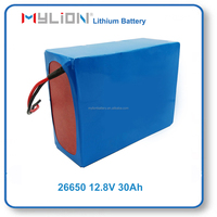 Rechargeable life po4 Lithium Battery for Solar Storage System 12V30Ah