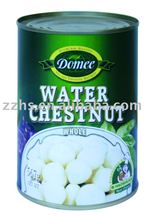 Canned Water Chestnut whole,canned fruit,water chestnut