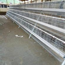 SHUXIN High Quality poultry faming Egg Layer Chicken Cage for sale
