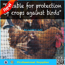 poultry netting/chicken netting/plastic chicken fence