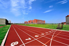 IAAF Certified Prefabricated system Running Track , indoor and outdoor sports surfaces ,13mm All Weather Sport Surface