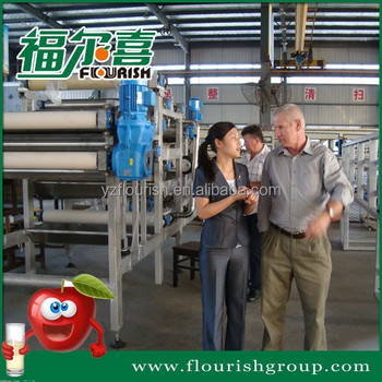 Industrial apple juicer production line