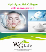 Functional protein Hydrolyzed fish Collagen Cas 9064-67-9