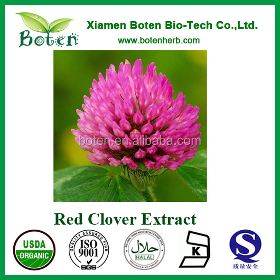 2.5%-40% Isoflavones Red clover p.e high quality