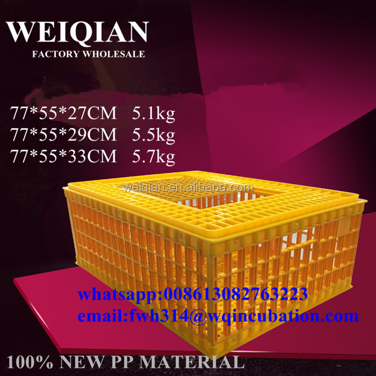 Transportation use plastic live chicken crate/coop/box transport cage