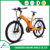 Flyer e bike electric bicycle