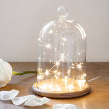 Factory Direct Sales Glass Cloche Glass Bell Jar with String Lights Led