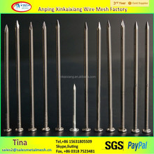 Iron material polished hot dipped Galvanized Common wire Nails