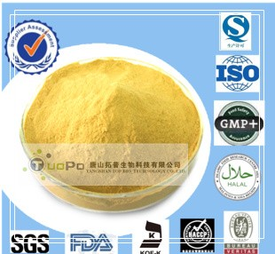 nutritional yeast extract powder food grade