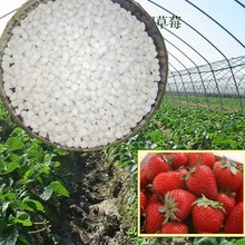Kinds of Foliar Fertilizer Calcium Magnesium Nitrate CALMAG