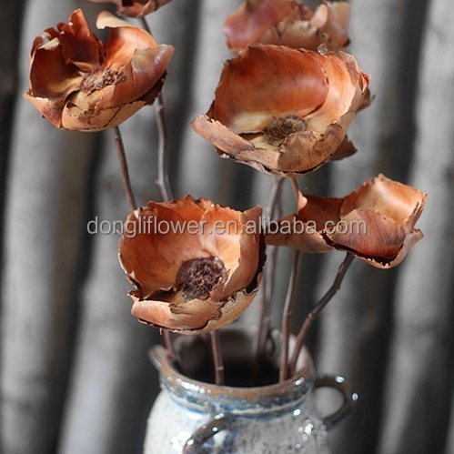 Dried Palm Blute coconut flower handicraft with stick stem