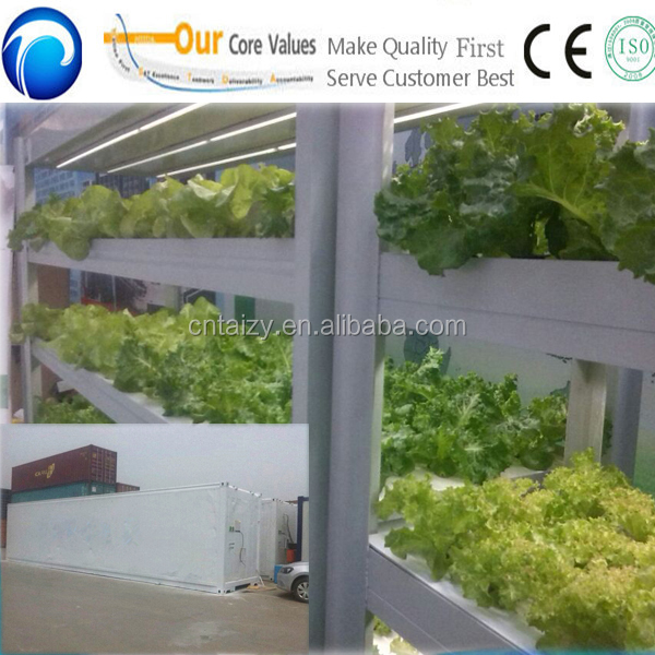 NEW!!patented product commercial hydroponic growing systems for organic vegetables soilless agriculture