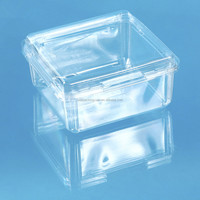 disposable eco-friendly high quality PET plastic packing fruit box for vegetable