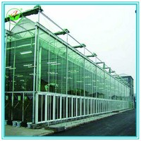 Commercial Glass Greenhouse For Sale