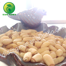 Raw processing type wholesale Pine nut kernels