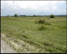 The agricultural lands for sale