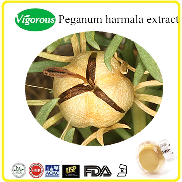 100% pure natural Peganum harmala extract powder, Peganum extract